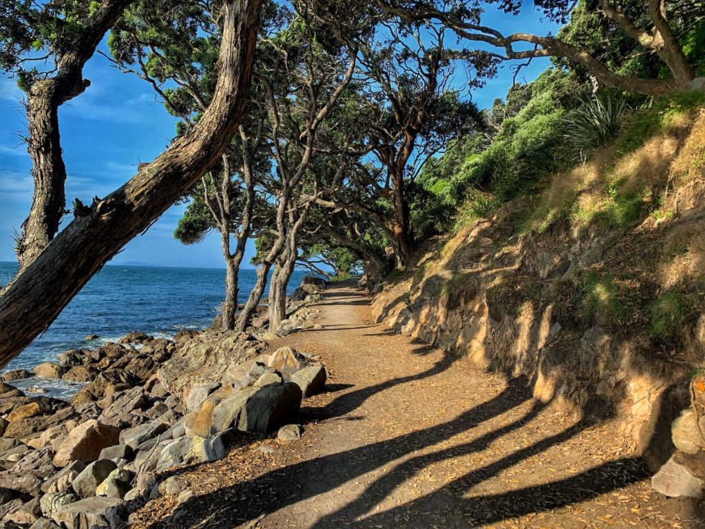 Best things to do in New Zealand's North Island Itinerary