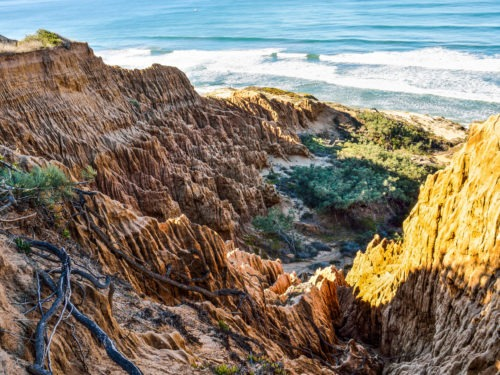 Best things to do in San Diego Cliffs
