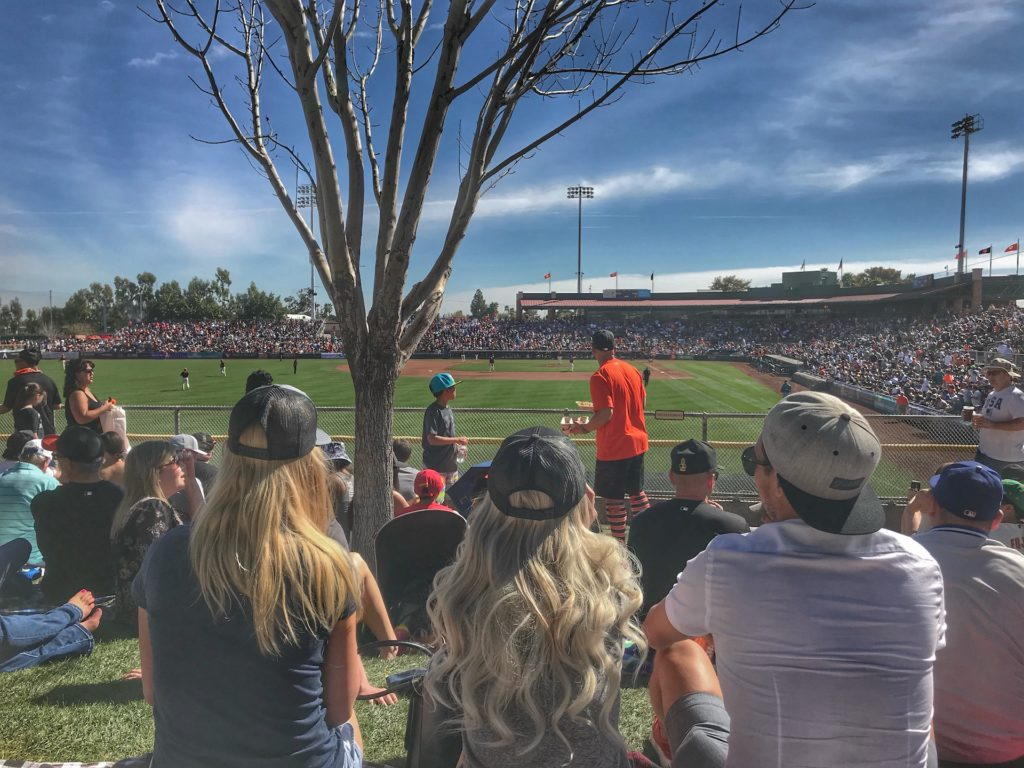 The phoenix bucket list things you have to do Spring training