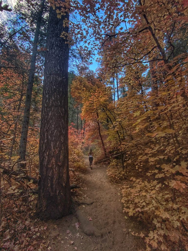 Best Hikes In Sedona Bear Mountain Trail 24