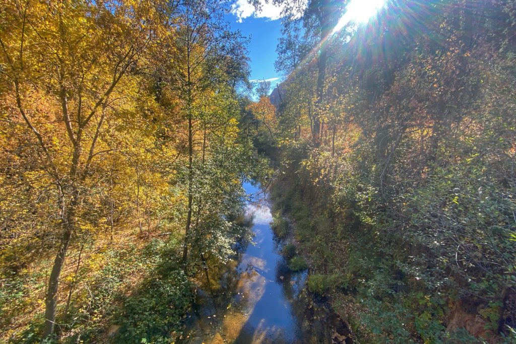 West Fork Trail Best Hikes In Sedona
