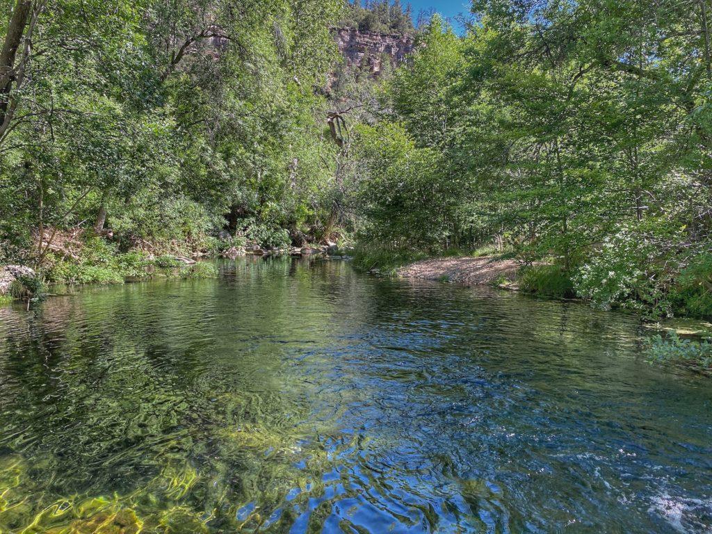 Bob Bear Trail Hike Fossil Springs 13