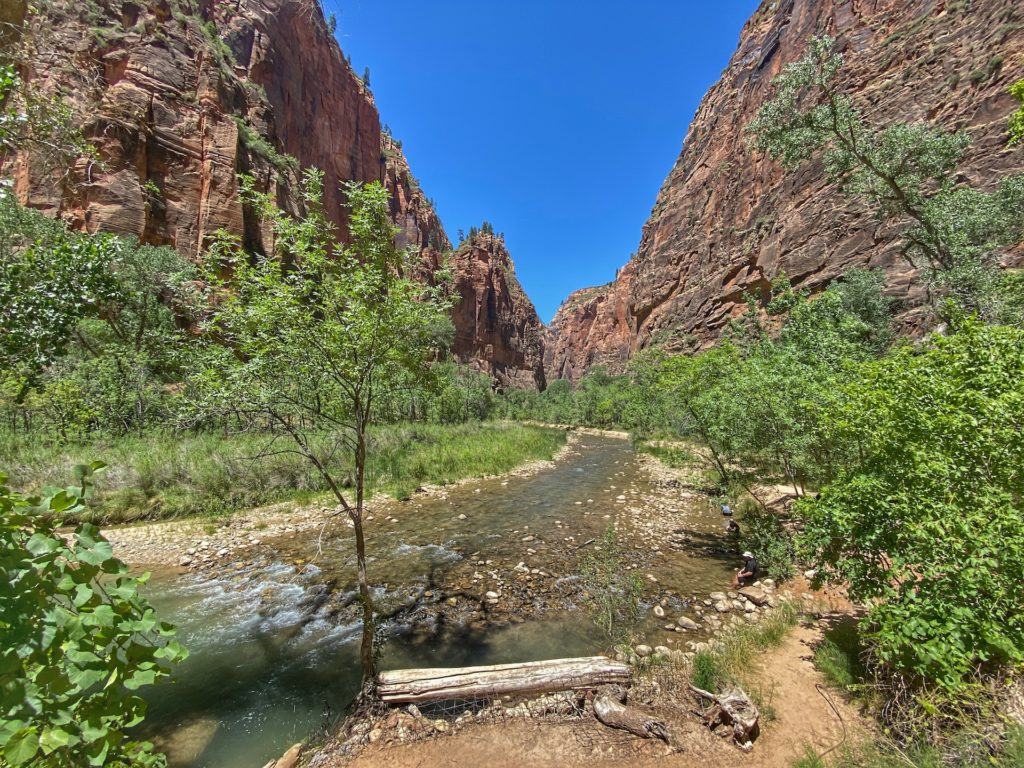 Best Hikes in Zion Riverwalk Trail The Narrows 3