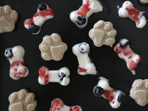 Pupsicle Recipe DIY Frozen Dog Treats