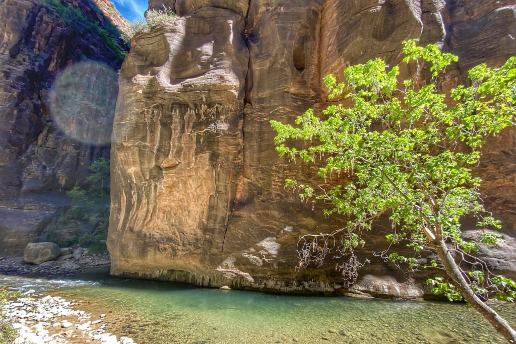 Best Hikes in Zion The Narrows