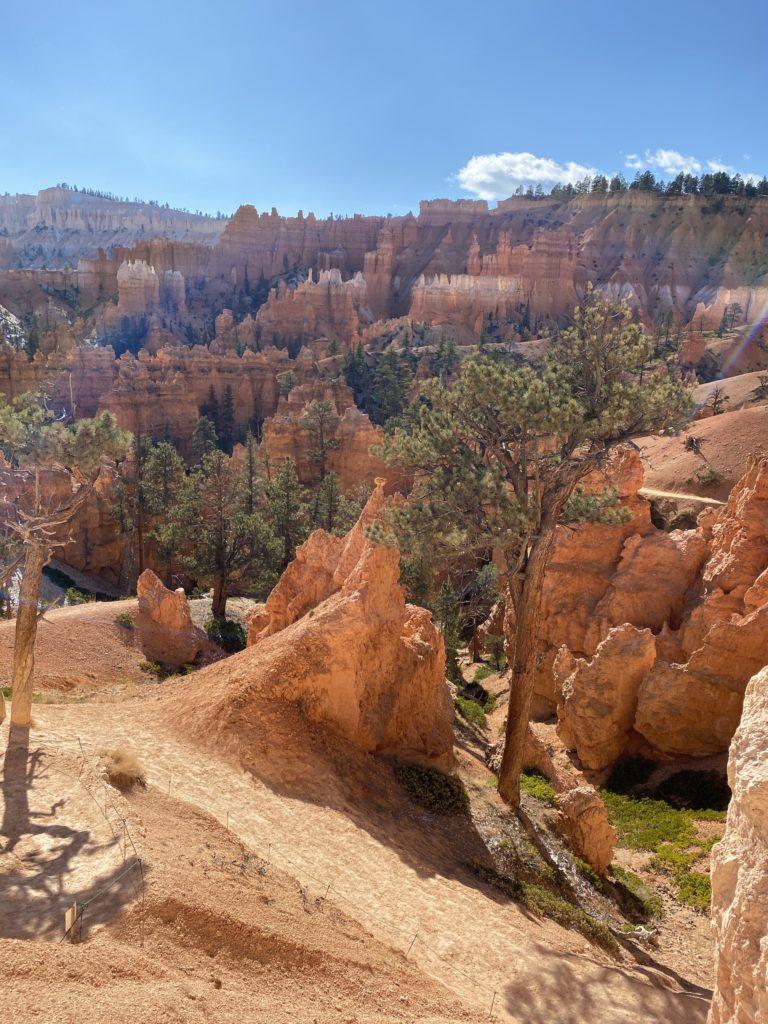 Navajo Loop Wall Street Trail Hike Bryce Canyon
