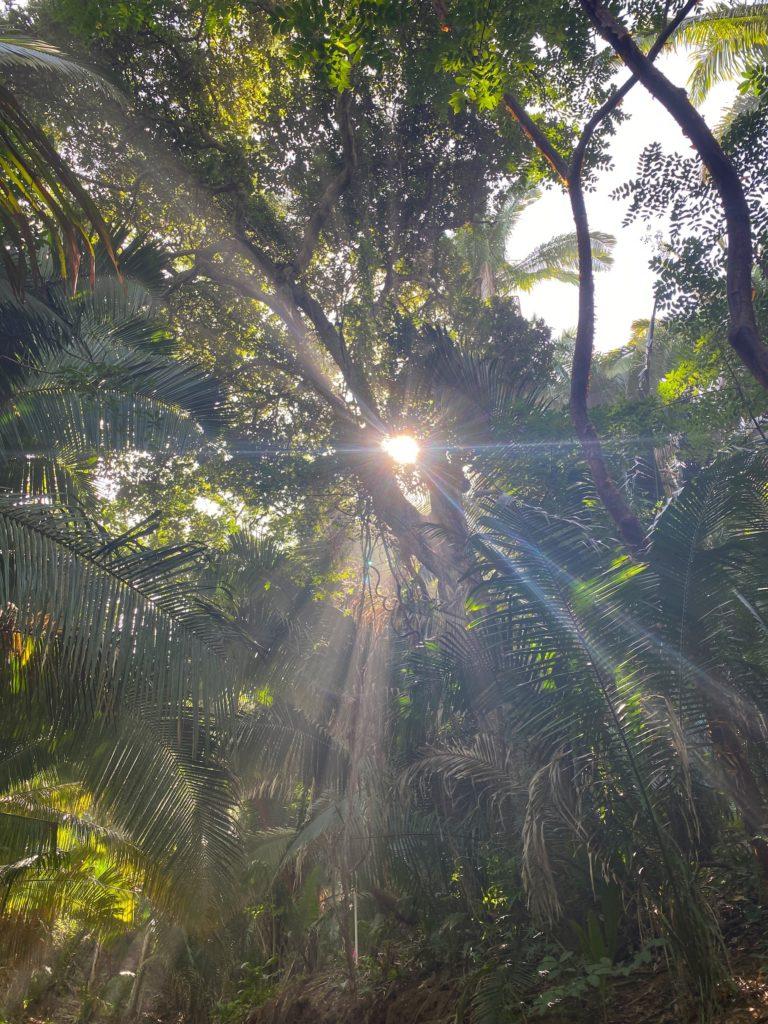 Hike From Sayulita To San Pancho