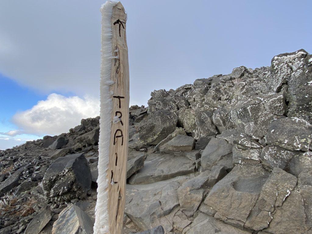 Humphreys Peak Hike Guide