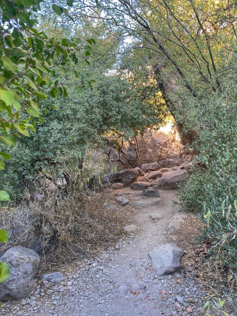 Peralta Trail to Fremont Saddle & Weavers Needle Hike Phoenix
